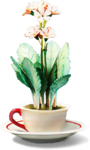 ldavi-bunnyflowershop-pottedflower7b.png