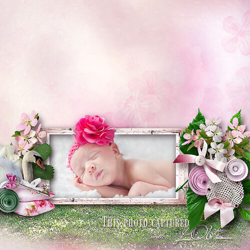 «sweet romance» 0_95536_34d9484c_L