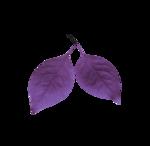 MyPassion_ViolettDesign_el (30).png