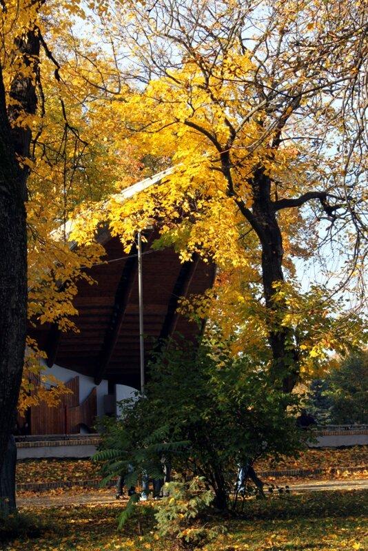 Летняя эстрада Мариинского парка осенью