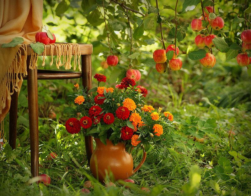 В сказочном саду