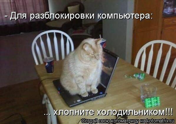 http://img-fotki.yandex.ru/get/6619/59709858.1d/0_ef6d8_2f94434c_XL.jpg