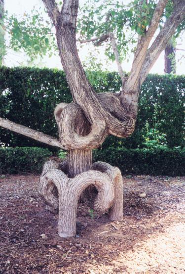 أشجار اكسل العجيبة 0_947a2_fb5e7018_ori
