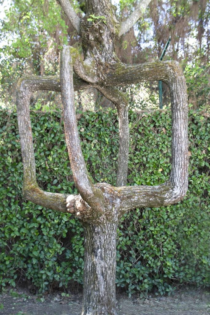 أشجار اكسل العجيبة 0_947a8_93829e3b_ori