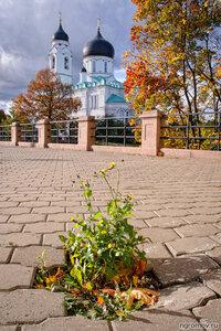 Собор Архангела Михаила (Ломоносов) (Ломоносов, Ораниенбаум, осень, Собор Архангела Михаила)