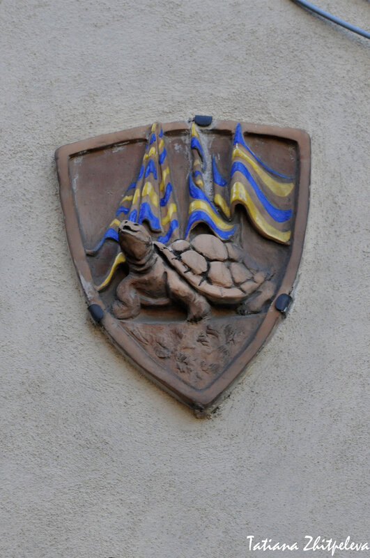 контрада Черепаха