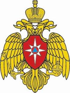 Владимир Миклушевский получил награду за  работу по обеспечению безопасности населения