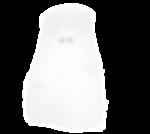 natali_halloween_ghost4.png