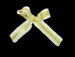natali_halloween_ribbon3.png