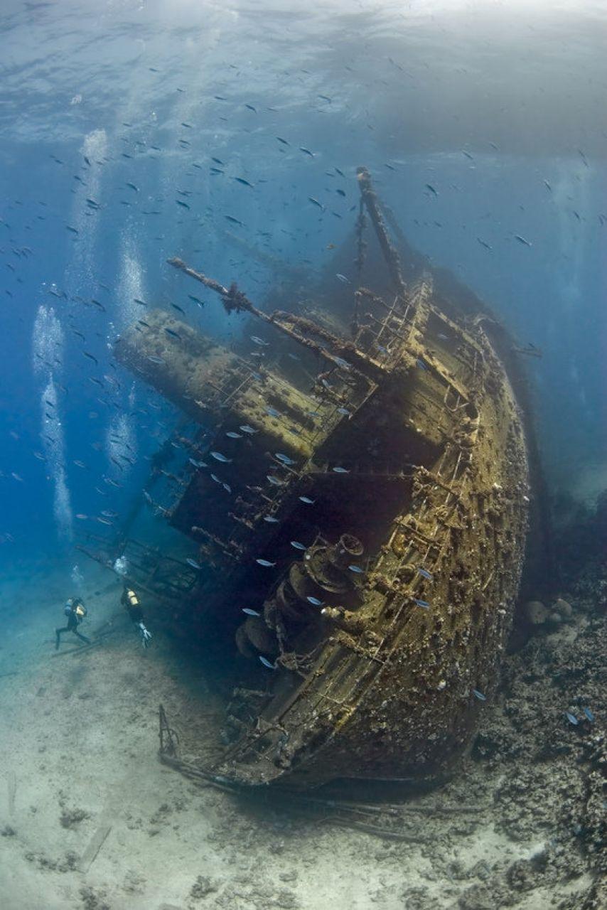 Затонувшие корабли - sapiens nil affirmat, quod non probet.