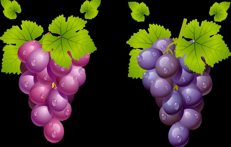 виноград а.png