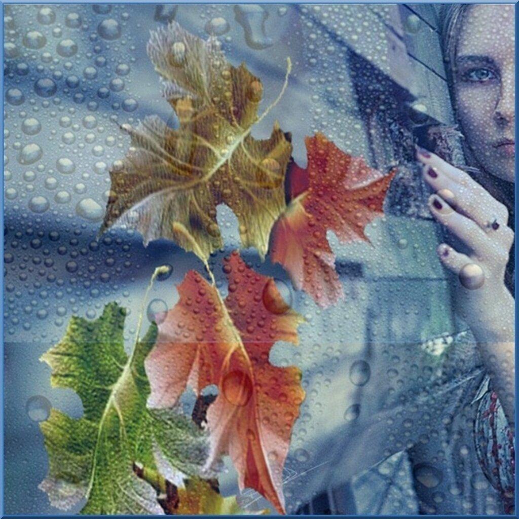 ...Дождь...