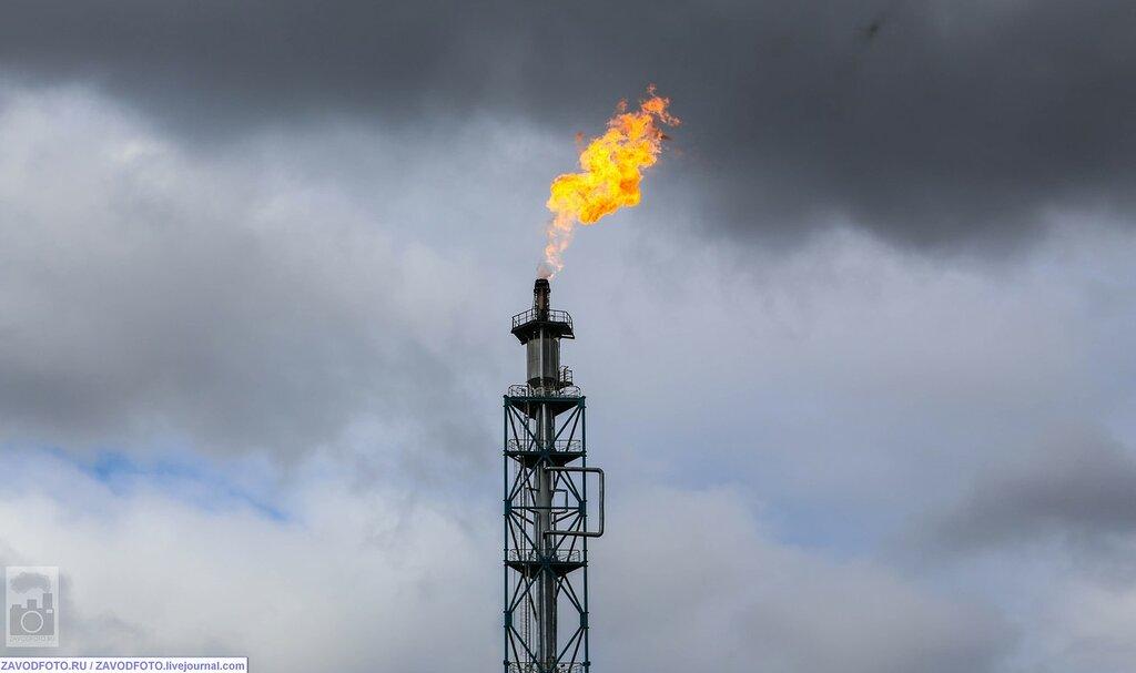 Газпром нашёл ещё много газа НЕФТЕГАЗОВАЯ