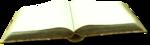 ldavi-bunnyflowershop-openstorybook1b.png