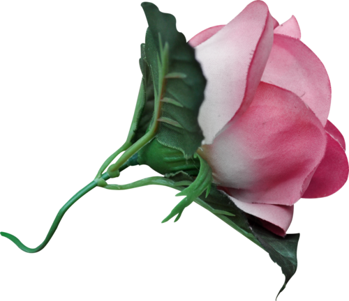 «sweet romance» 0_9557a_8e20843f_L