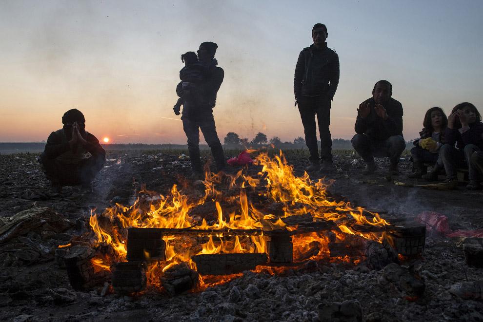 16. На границе Словении и Австрии, 24 октября 2015. (Фото Leonhard Foeger | Reuters):