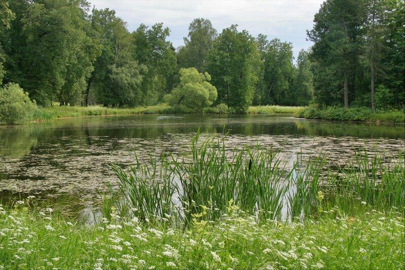 Павловский парк, Розовопавильонные пруды