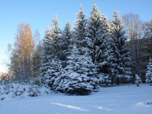 Зима. Явление первое.
