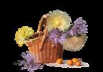 цветы (31).png