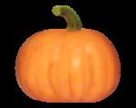 natali_halloween_pumpkin8.png
