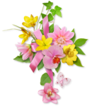 DBB_gardenflowers_cluster03.png