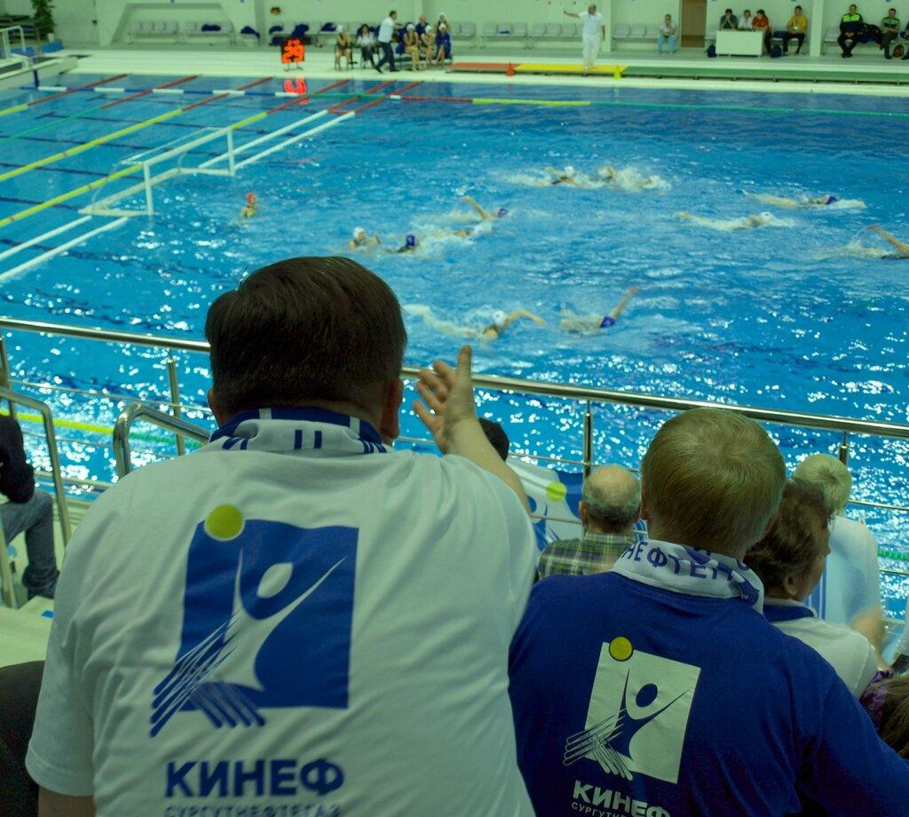 спорт кинеф водное поло фото первый