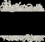 glitter frame-(loucee).png
