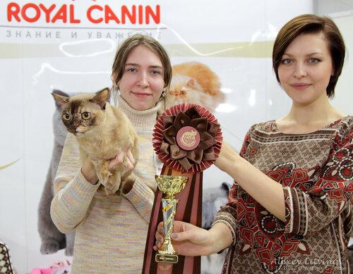 http://img-fotki.yandex.ru/get/6621/135140311.42/0_9462c_9dbacb75_L.jpg