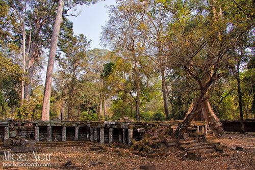эльфийские руины в сказочном лесу