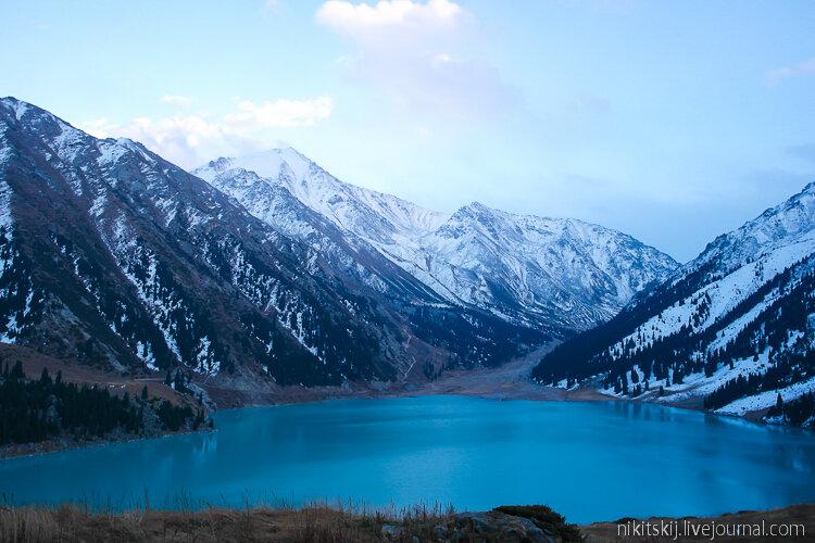 Картинки красивых цветов природы в алматы