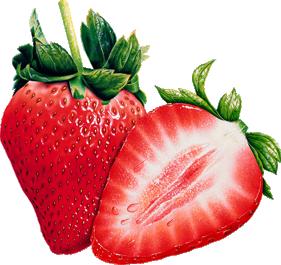 «Acidulous Freshness» 0_95314_bb545a94_L