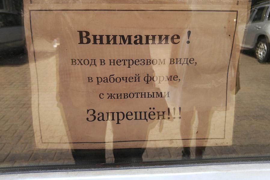 11. Вдоль улицы Клумова архитекторами была оставлена широкая лесополоса, защищающая жителей домов от
