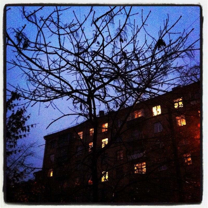 Дежурные деревья