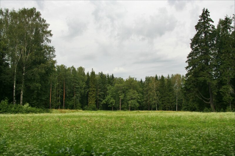 Павловский парк, Парадное поле