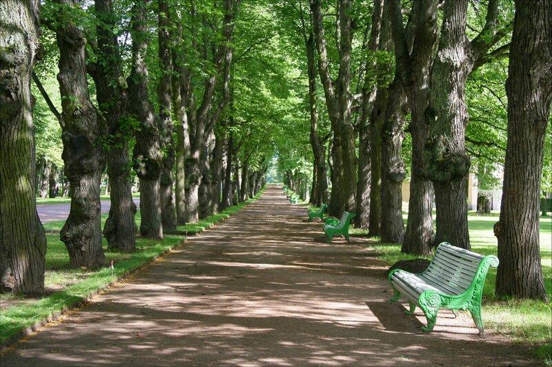 Павловский парк, Тройная Липовая аллея