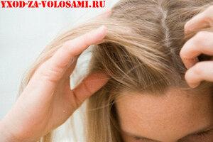 Сухой шампунь для волос. Купить или вымыть голову?