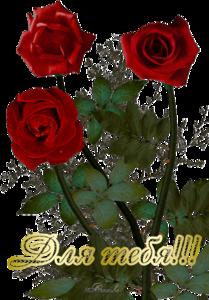 http://img-fotki.yandex.ru/get/6622/107612177.4de/0_9c094_4a31bbe7_M.png