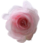 priss_spring_el16.png