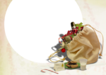 hollydesigns_ttnbc-holidaycards2-4.png