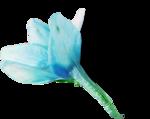 ldavi-shadowedflowers-delphinium4.png