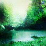 ldavi-scenesfms-summer-5c.jpg