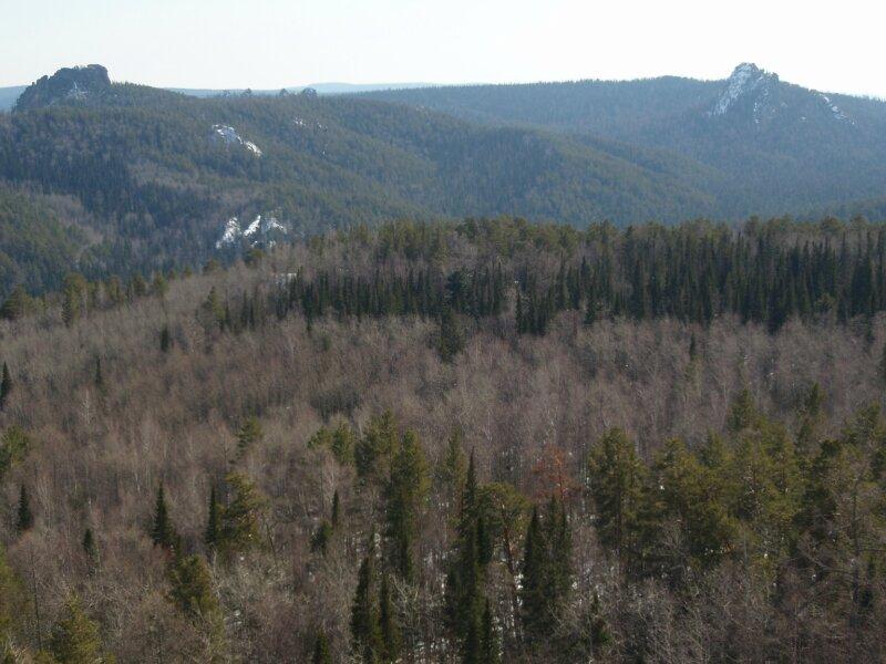 Панорама заповедника в сторону Диких столбов