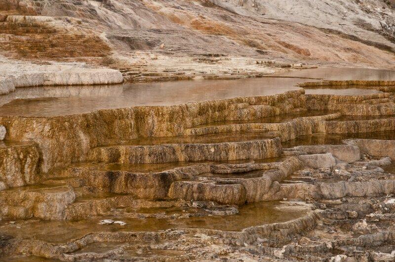 Террасы мамонтовых источников
