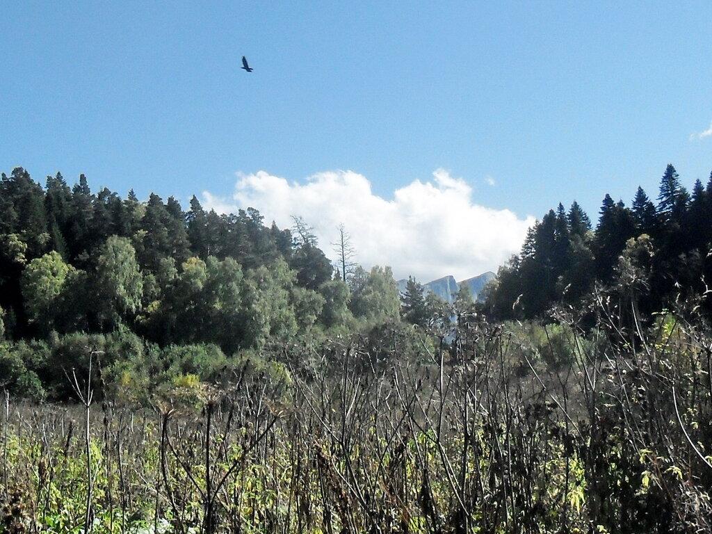 В походе, горы, сентябрь 2012