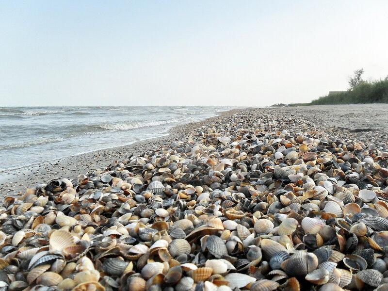 Азовское побережье, Ачуевская коса