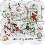 DDD_Breath Winter
