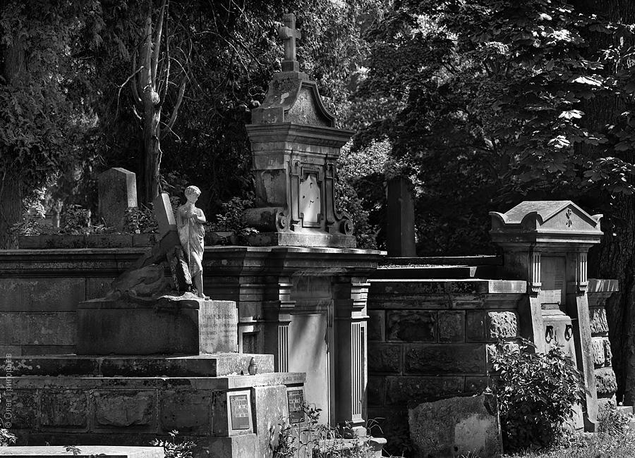Львов. Лычаковское кладбище