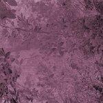 Violette-s_Garden_Cocotounette_p (3).jpg