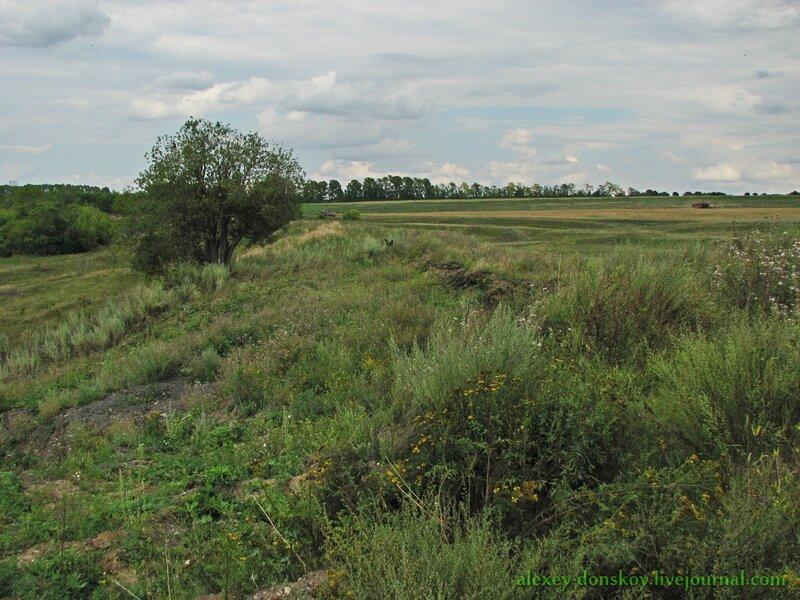Вид на старую железнодорожную насыпь