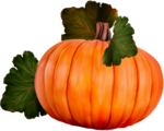 dus-intothedarkness-pumpkin4.png